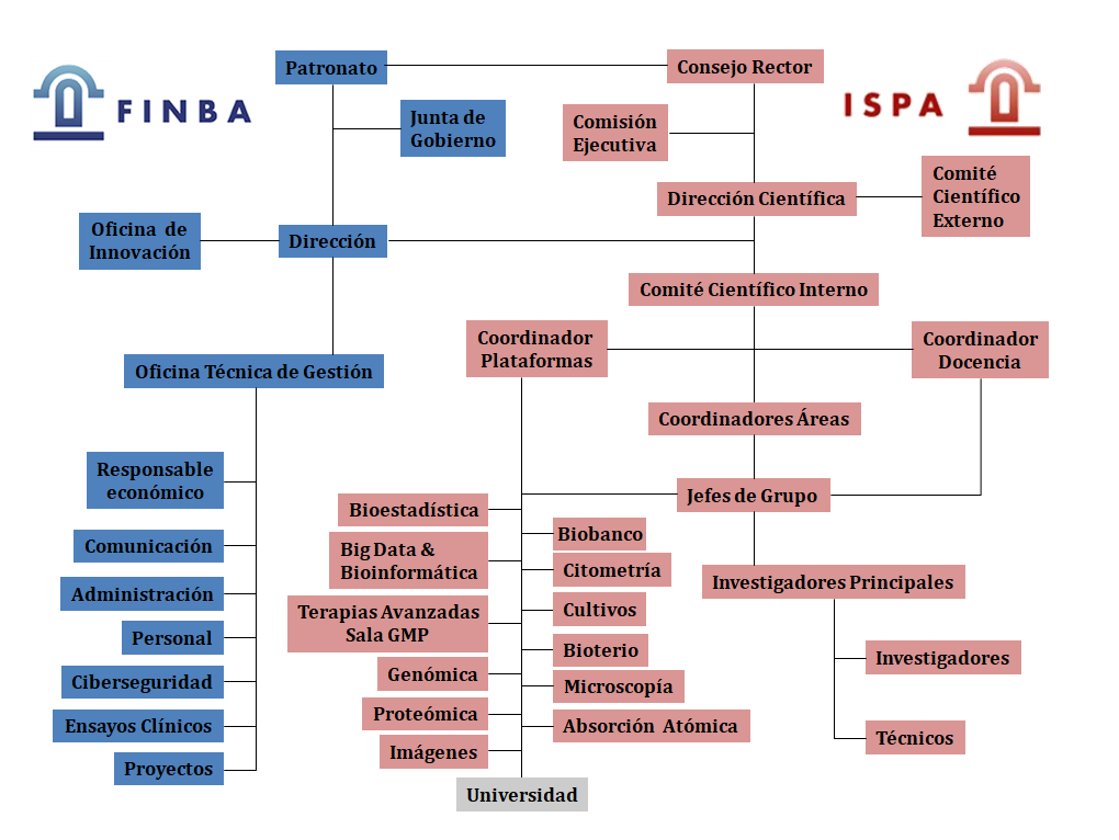 Organigrama FINBA-ISPA