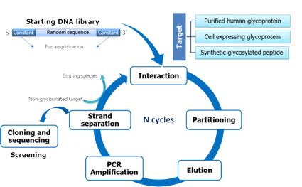 ISPA grupo de investigación Electroanálisis línea de investigación 1