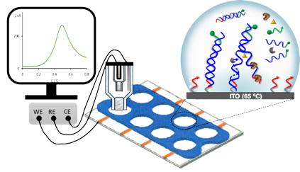 ISPA grupo de investigación Electroanálisis línea de investigación 2